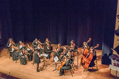 Bouchaine Young Artist Concert: Havana Chamber Orchestra