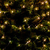 CarolCrosson_Solstice_Wk51.37