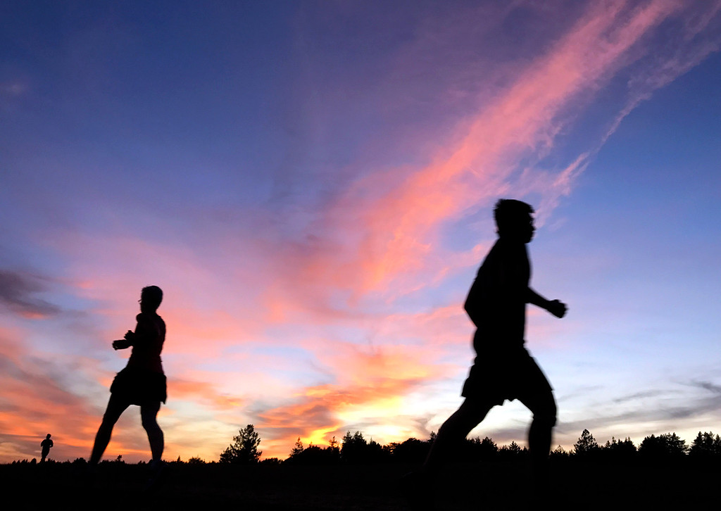 . UC SANTA CRUZ