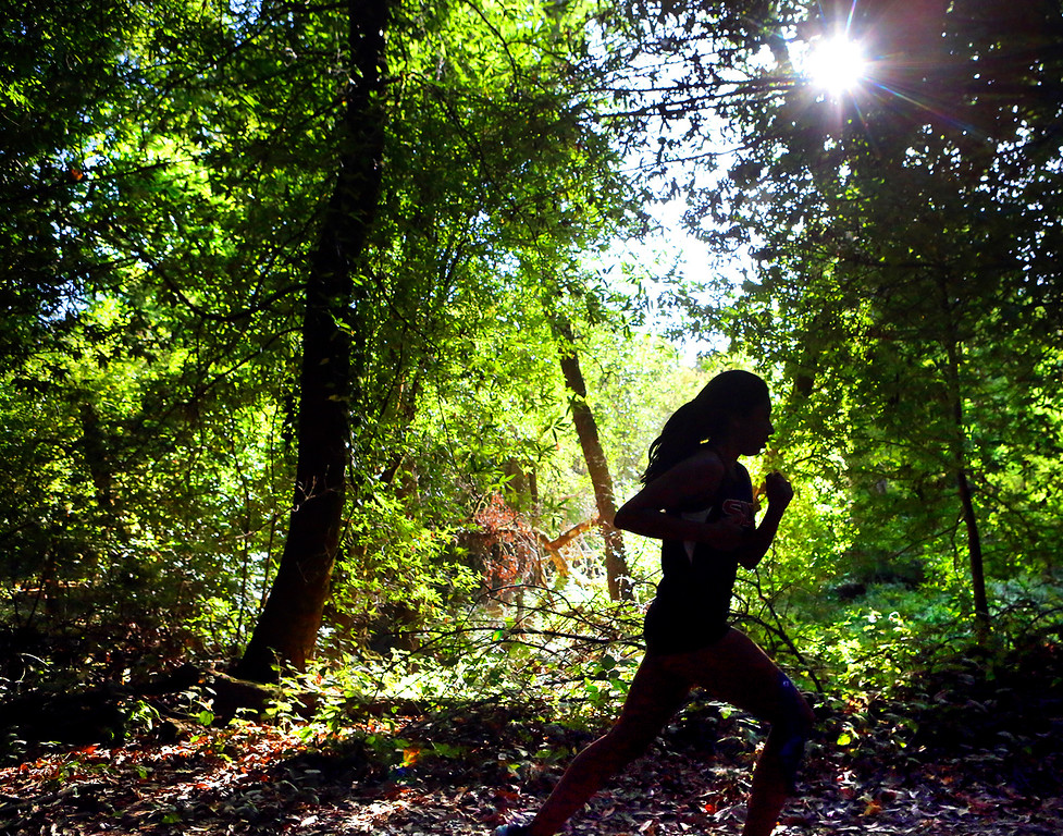 . A San Lorenzo Valley High runner is silhouetted by afternoon sunlight as she competes in a Santa Cruz Coast Athletic League home cross country meet against Scotts Valley and Soquel in Henry Cowell Redwoods State Park in Felton, California on Thursday September 14, 2017.