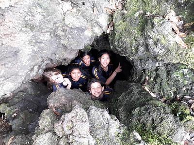 2017 Rangitoto  Science Field Trip