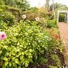 Hamilton Gardens, New Zealand