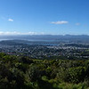 Panorama from Brookly Wind Turbine, Wellington, New Zealand