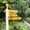 McKinney Kauri, Warkworth, New Zealand
