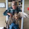 Hawk, Whangarei Native Bird Recovery Center, New Zealand