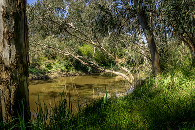 Eroding River Banks
