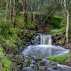 Banyule Creek Weir #1