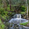 Banyule Creek Weir