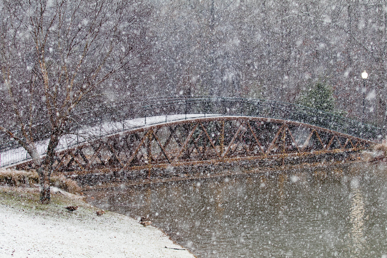 GWU Snow Day Dec 2017