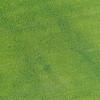 Fertilizer machine tracks in a sugar beet field