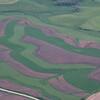 SE Minnesota farmland