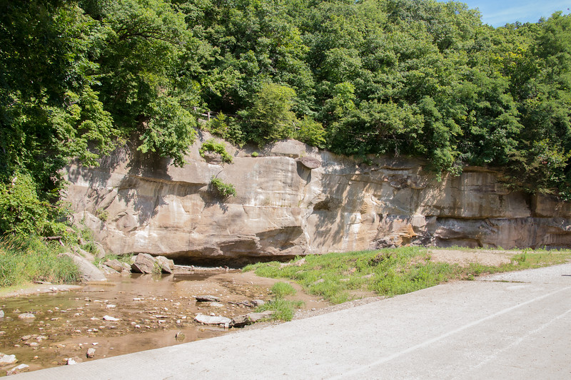 Limestone bluff exposed by the creek