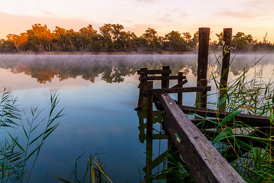 Murray River Scene