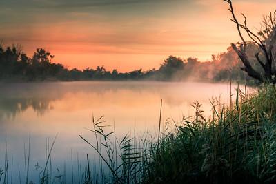 Mist on the Murray