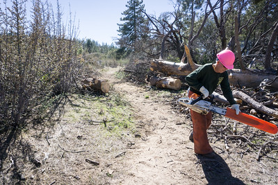 20170401051-Chilao, Hillyer, Silver Moccasin Trailwork