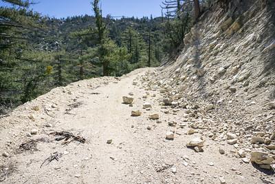 20170401008-Chilao, Hillyer, Silver Moccasin Trailwork