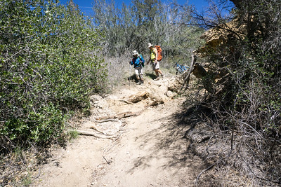 20170401042-Chilao, Hillyer, Silver Moccasin Trailwork
