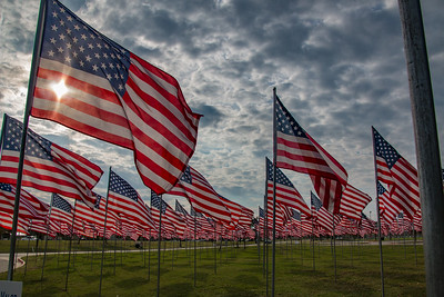 Veterans Day in Bryan/College Station TX