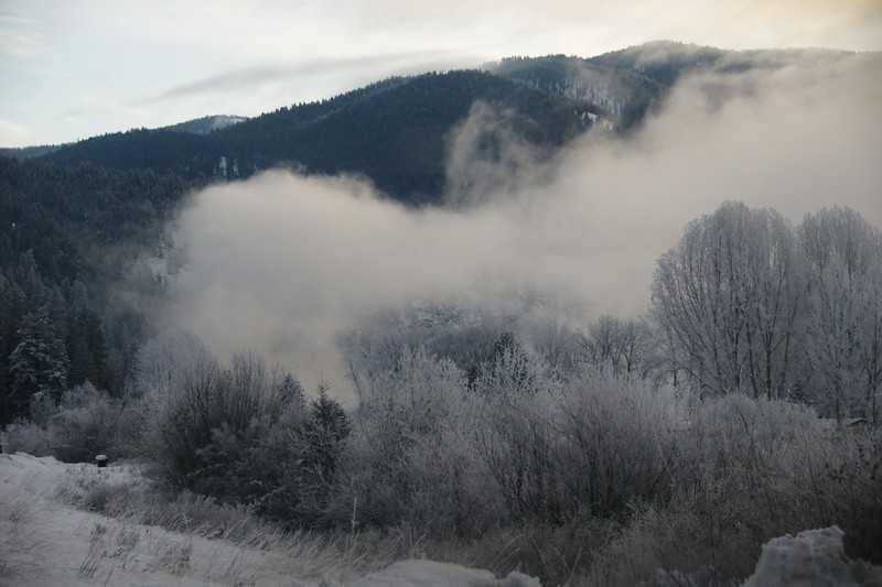 Hoar Frost and Fog near the Kootenai River, Libby, MT