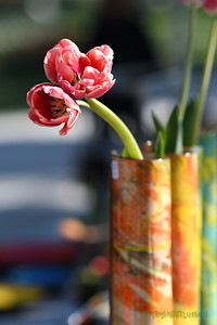 Poterie_Tulipes_08042017 (30)
