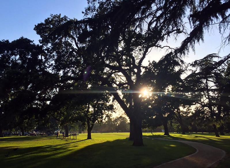 park before dusk