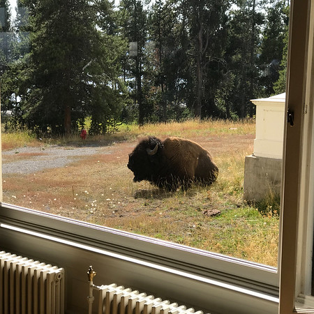 2017-09-09 - Yellowstone + Grand Teton Iphone shots