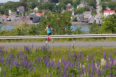 A runner on Campobello Island heading back to the U.S. border, with the village of Lubec and the finish line in the background. 2017 Bay of Fundy International Marathon. Photo credit: Lisa M. Dellwo