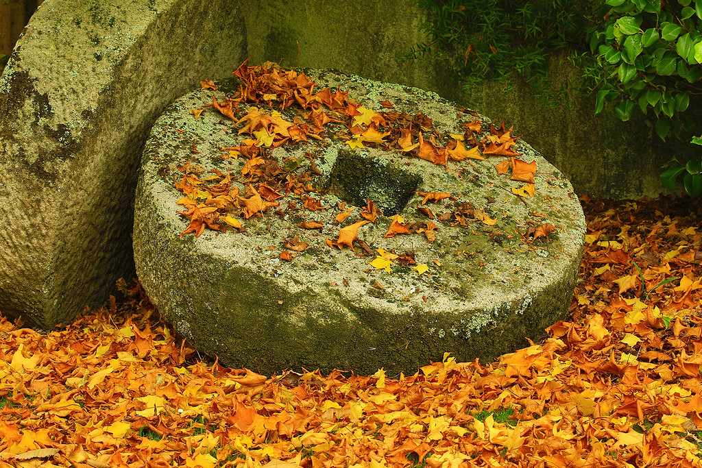 C Grade Merit, Leigh Burford - Mill stones in Autumn
