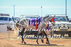 2017 Roebourne Cup-17