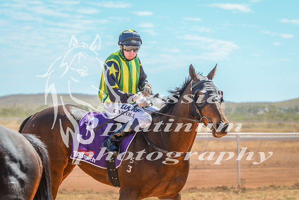 2017 Roebourne Cup