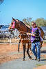 2017 Roebourne Cup-277
