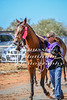 2017 Roebourne Cup-276