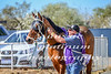 2017 Roebourne Cup-267