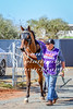 2017 Roebourne Cup-266