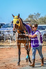 2017 Roebourne Cup-281