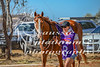 2017 Roebourne Cup-428