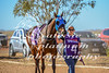 2017 Roebourne Cup-438