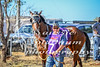 2017 Roebourne Cup-557