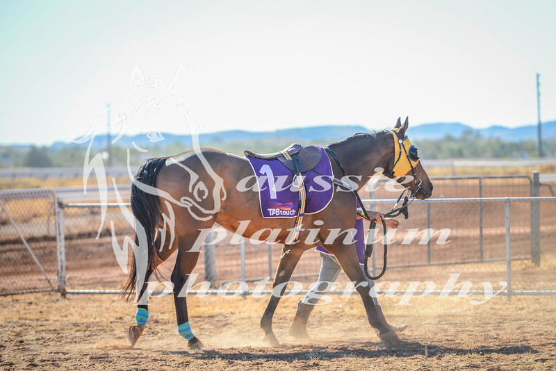 2017 Roebourne Cup-543