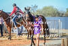 2017 Roebourne Cup-562