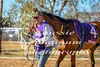 2017 Roebourne Cup-554