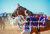 2017 Roebourne Cup-694