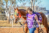 2017 Roebourne Cup-761
