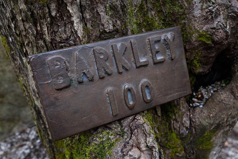 H_Stern_Barkley-1502