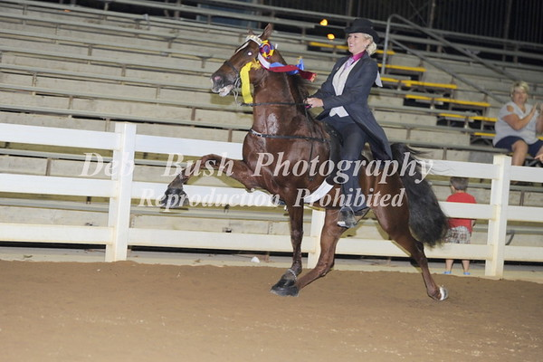CLASS 45  ADULT/YOUTH PONY  CHAMPIONSHIP