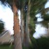 WestfieldRita_Zoom Burst