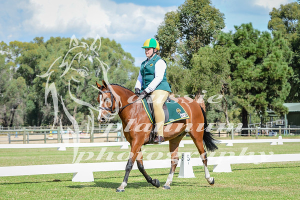 2017 Saddles Plus Interschools Championships