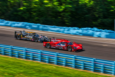 Sahlen 6 Hours at the Glen @ Watkins Glen International - #31 Dane Cameron, Eric Curran, and Filipe Albuquerque in a Cadillac DPi - Whelen Engineering Racing AND #5 Joao Barbosa, Christian Fittipaldi, and Filipe Albuquerque in a Cadillac DPi - Mustang Sampling Racing