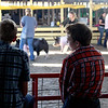 Kyle Westphal (left), 16, and Rich Thompson, 14, both of Newark, check out the competition at the Sandwich Fair on Thursday. Both Westphal and Thompson were at the fair to display their animals in competition.