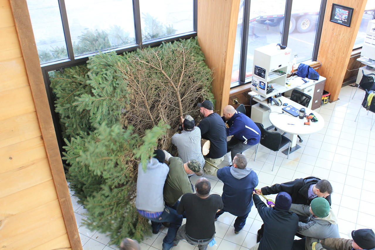 Charles Pritchard - Oneida Daily Dispatch Crews set up the Christmas tree at Nye Automotive on Route 5 in Oneida on Tuesday, Nov. 28, 2017, in preparation for the annual Share a Caring Christmas to be held on Saturday, Dec. 2, 2017.